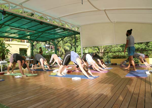 Yoga-Teacher-Course-in-Thailand