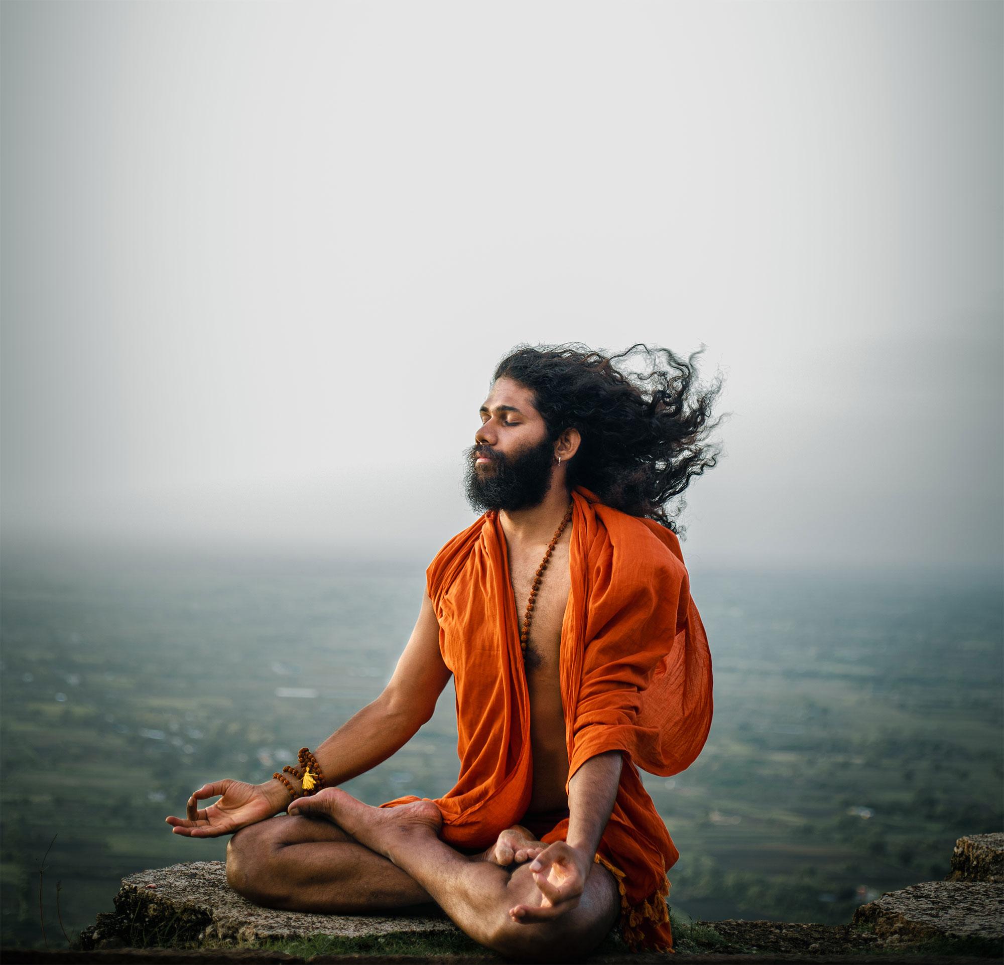 Swami Chaitanya Hari - Yoga Nisarga